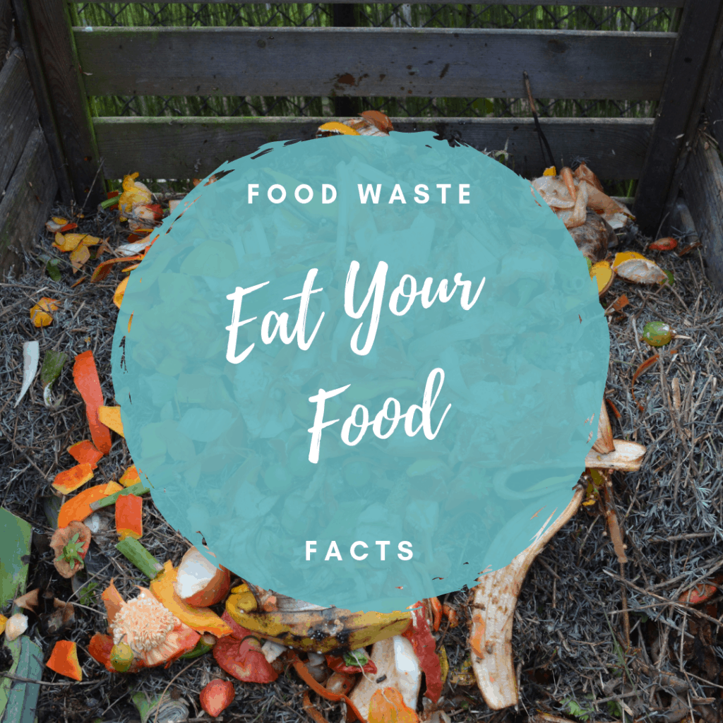 food waste facts by a dietitian