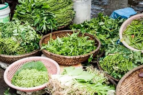 fresh green herbs in basket