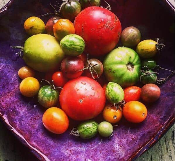 colored tomatoes in purple dish