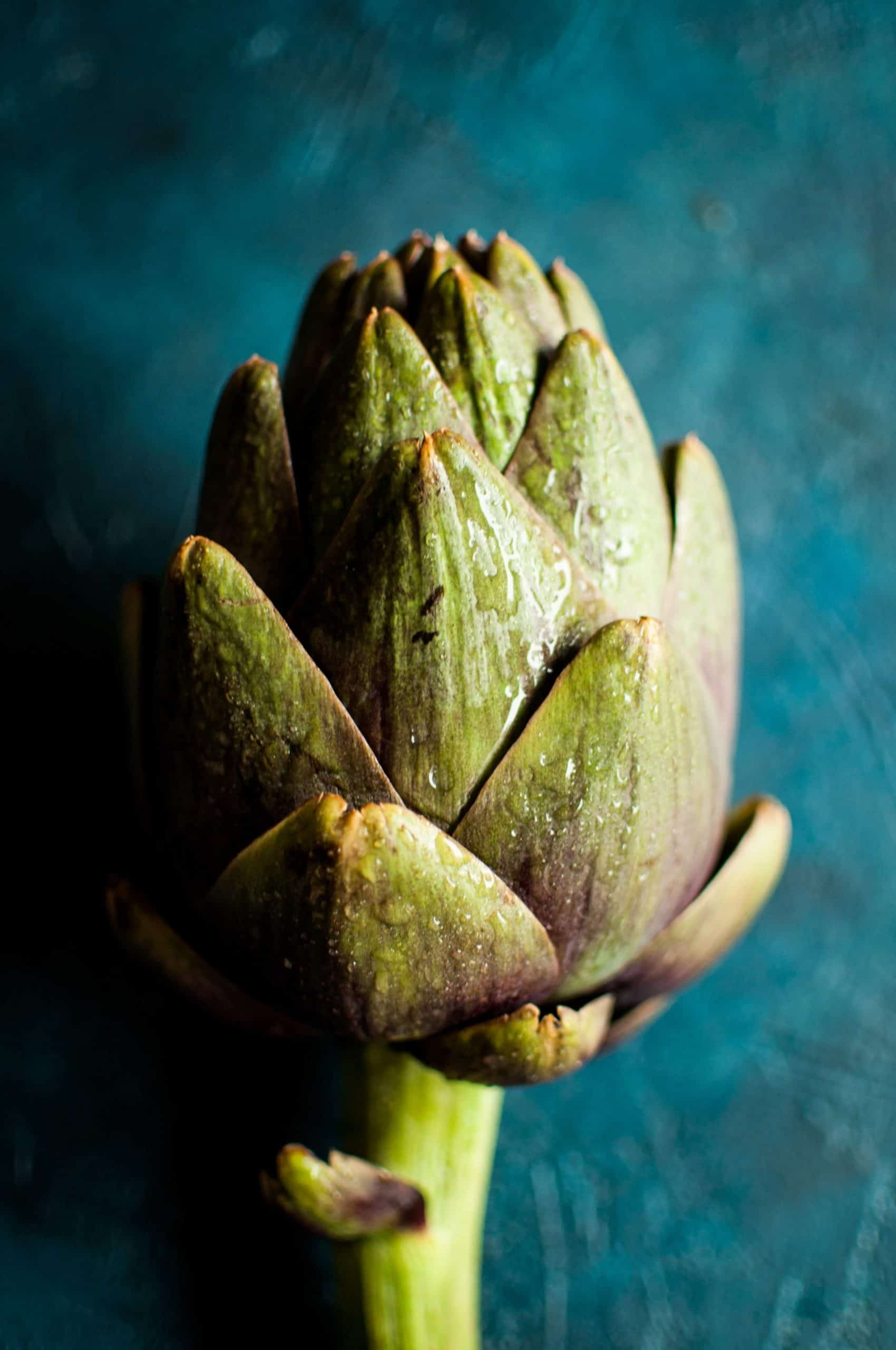 Artichoke on blue background