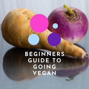 Beginners Guide to Going Vegan